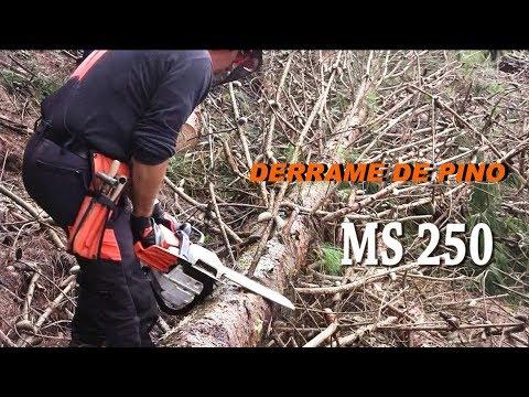 Motosierras Stihl MS 461R en Los Reyes Veracruz 7