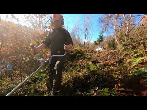 CLEARING IN AUTUMN WITH THE STIHL 460
