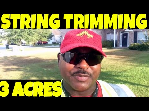 3 acres with a STIHL a lawn cutting VLOG