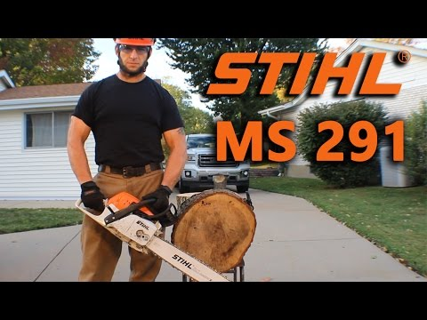 Stihl MS 291 Overview/Review