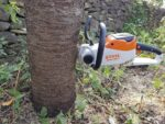 STIHL Cordless MSA 140 C-BQ Chainsaw Cutting logs | TEST