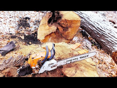 Stihl MS 290 Farm Boss VS. Stihl MS 271 Farm Boss In Action