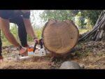 STIHL MSA 140 C-BQ Chainsaws Cutting 47cm. Log