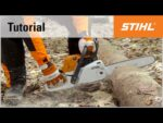 Cutting a trunk on the ground with a STIHL chainsaw