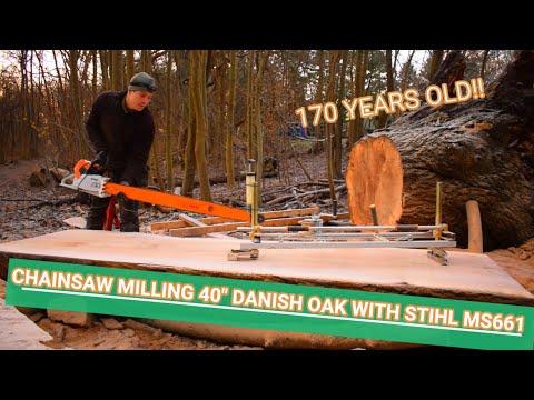 Chainsaw milling 40″ Danish oak with Stihl MS661