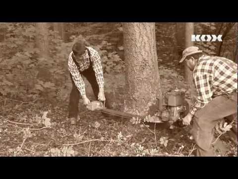 Tronçonneuse à deux hommes Stihl KS43
