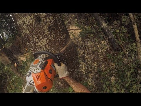 Ms 500i – La meilleure machine Stihl