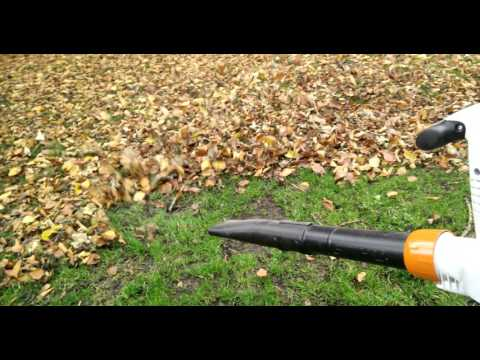 STIHL bge81 test: Blowing the leaves