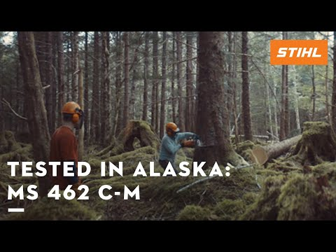 The STIHL MS 462 C-M tested in the forests of Alaska