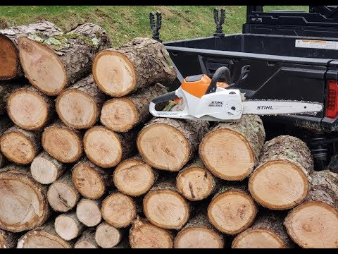 #252 The REAL DEAL Stihl MSA 200 C Battery Power Chainsaw