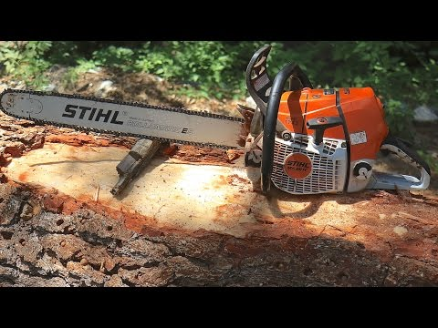 Tree cutting with a STIHL MS 661 C chainsaw