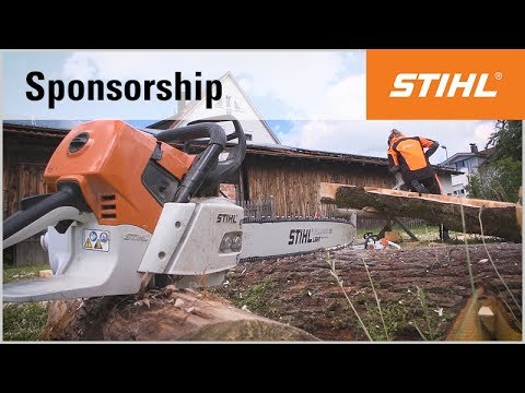 Carving with the chainsaw: sculptures by STIHL