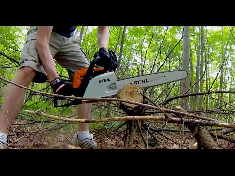 Stihl MS 171 Review