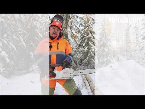 Testissä akkumoottorisaha Stihl msa220 c   Metsälehti
