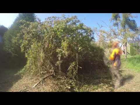 Timelapse STIHL FS 410C vs gros roncier [GoPro]