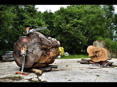 On découpe une GROSSE bille de frêne || STIHL 046 AV / ms 462c / 064 AV