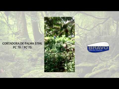 stihl, cortadora de palmas pc 70 / pc 75, de venta en Bravo Ferreteria