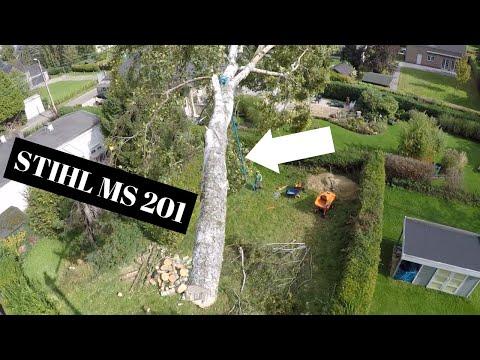 DEMONTAGE DE 2 BOULEAUX STIHL MS 201