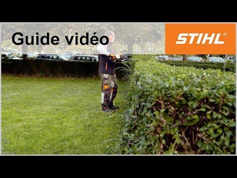 Technique de travail: Coupe en trapèze – Taille-haie thermique STIHL