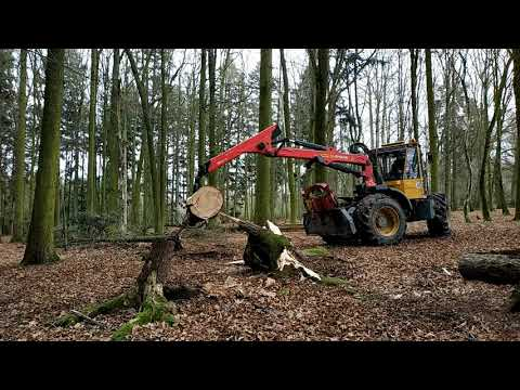 STIHL MS 500i, part 31 – with WELTE 100 – disproved trees