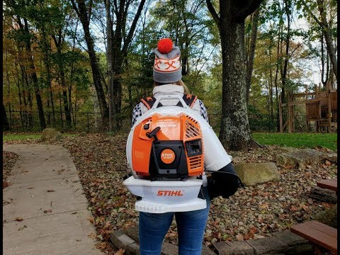 #268 THE NEW STIHL BR 800 Blower is a Beast! Fall Leaves Beware