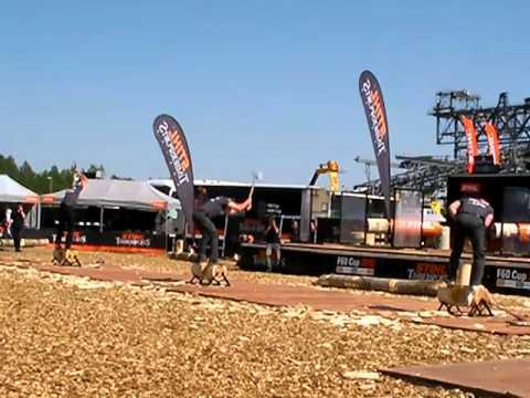 Stihl Timbersports 2012 F 60 Cup Underhand Chop Ebner Kraus Braun