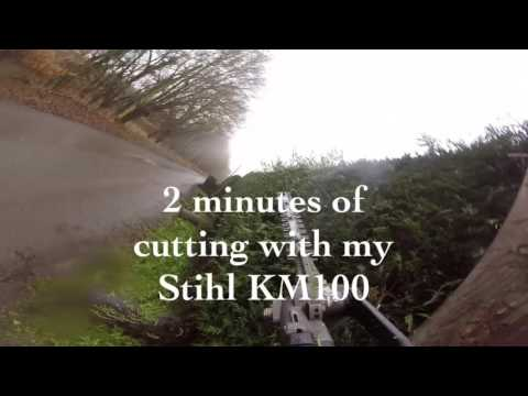 Laurel and conifer hedge trimming / cutting , Stihl KM100 Go Pro action.