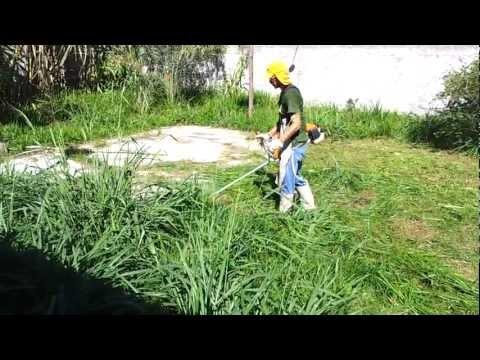 Corte de Vegetação – Roçadeira Stihl FS120