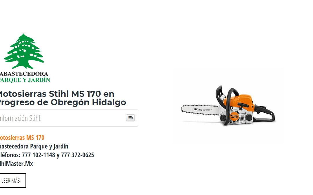 Motosierras Stihl MS 170 en Progreso de Obregón Hidalgo