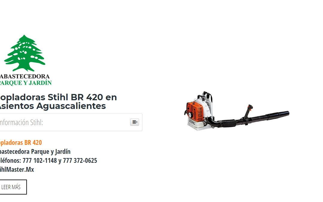 Sopladoras Stihl BR 420 en Asientos Aguascalientes