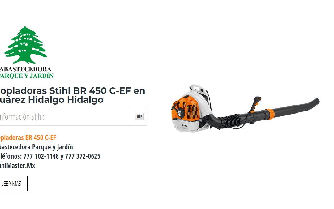 Sopladoras Stihl BR 450 C-EF en Juárez Hidalgo Hidalgo
