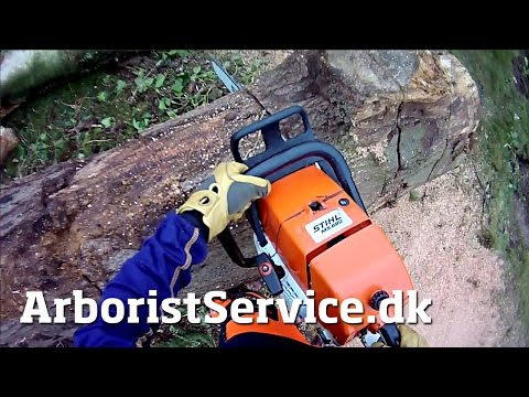 Stihl MS 880 with .404″ chain on 30″ bar in 25″ log