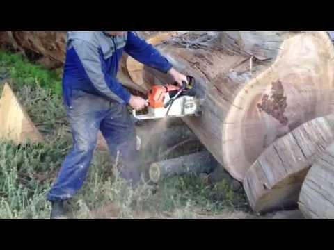 Biggest Stihl chainsaw cutting firewood  vid2
