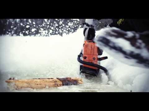 STIHL Chainsaw In Action