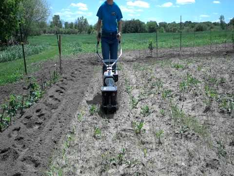 Stihl Yard Boss Cultivating the Garden